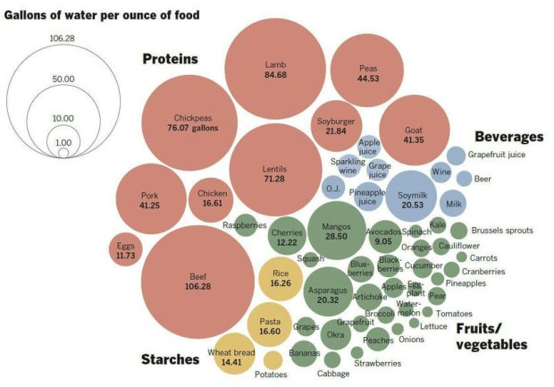 gallons of water to produce foods flowingdata