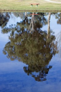 Inverted by mgjefferies via Flickr