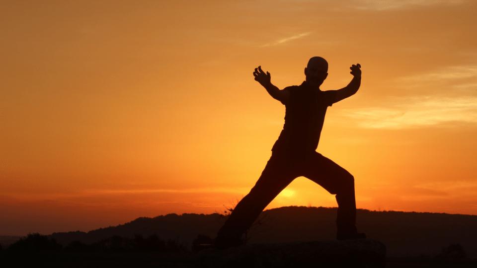 Kung Fu vs. Qigong: A Quick Visual Explanation
