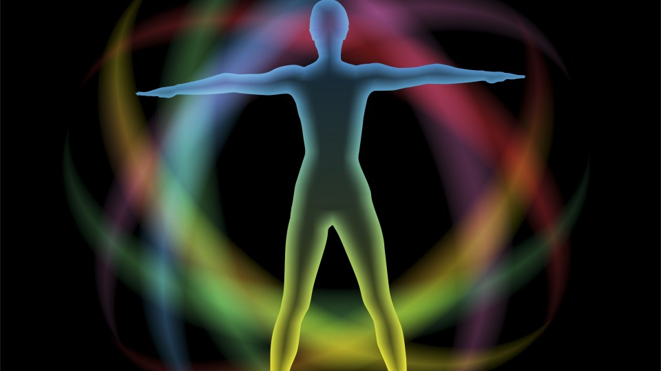 Acupuncture Meridians: What Qigong Students Need to Know
