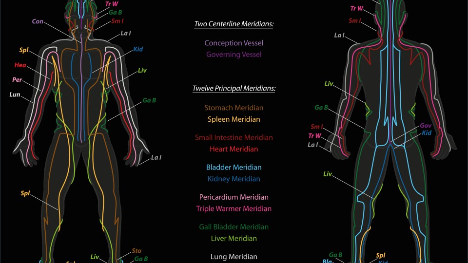 Qigong Students: Here's How to Make Sense of the Meridians