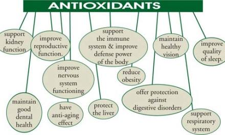Antioxidant Depletion by Fluoroquinolones
