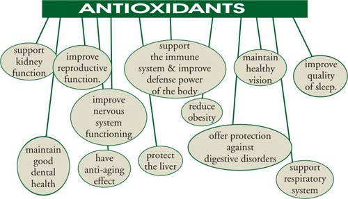 Antioxidant Depletion by Fluoroquinolones