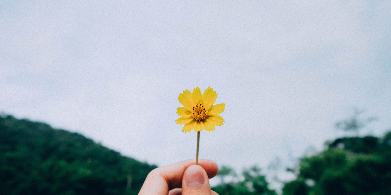 Acknowledgment is Healing