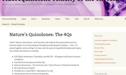 Quinolones in our Environment