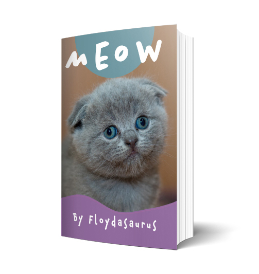 3d mockup of paperback of Meow