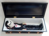 Coffin (Open) with Dracula inside