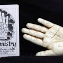 Left hand with Palmistry handbook