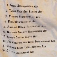 Political Satire re: Newt Gingrich-USA-American-Screenprint cotton-Size XL