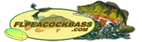 FLPEACOCK.logo