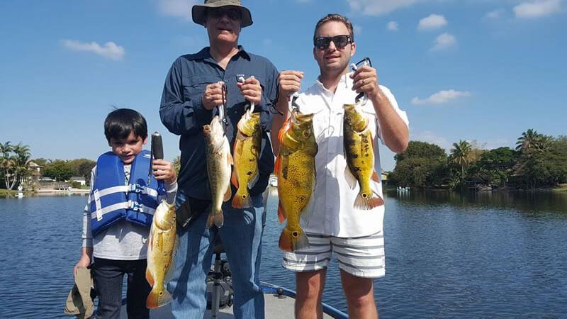 Panama natives go miami florida peacock bass fishing for Peacock bass fishing miami