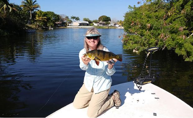 Naples Florida Peacock Bass Fly Fishing Adventure
