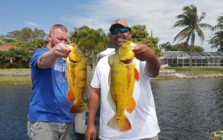 Miami Outdoor Activities