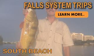 Falls System South Beach
