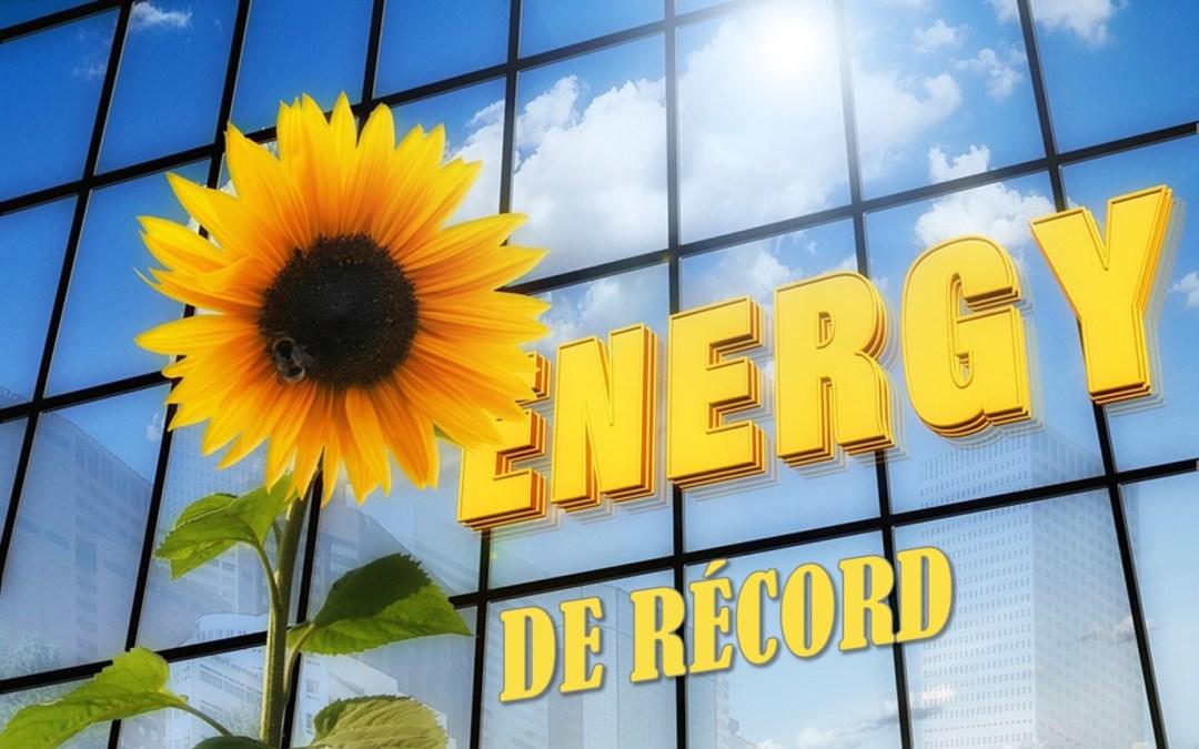 Las energías renovables batieron récords en 2015