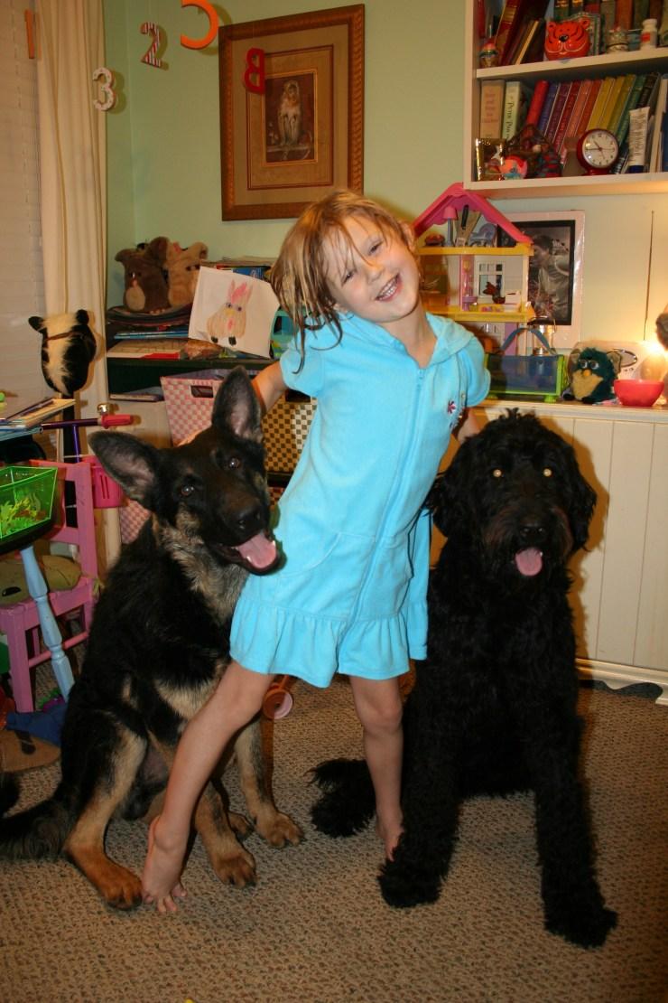 Jager the German Shepherd