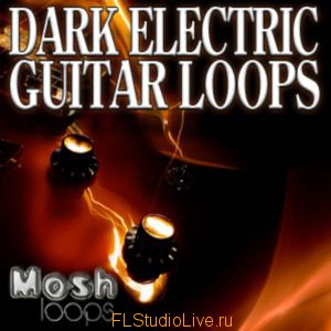 Mosh Loops - Dark Electric Guitar Loops