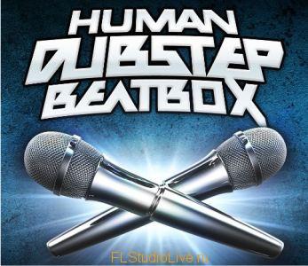 Prime Loops Dubstep Beatbox WAV