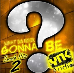 Сэмплы YnK Audio What Da Hook Gonna Be Smash Hitz 2 для FL Studio