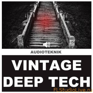 Лупы для FL Studio Audioteknik Vintage Deep Tech WAV