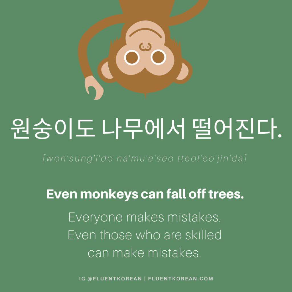 원숭이도 나무에서 떨어진다