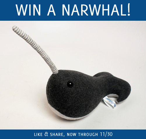 Cyber Monday - win a narwhal!