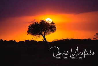 Fluffyshotme Photography David Morefield