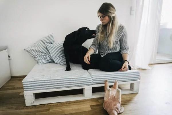 hundebett-aus-paletten-flummisdiary