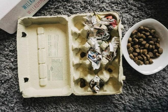 hundespielzeug-aus-eierkarton-diy