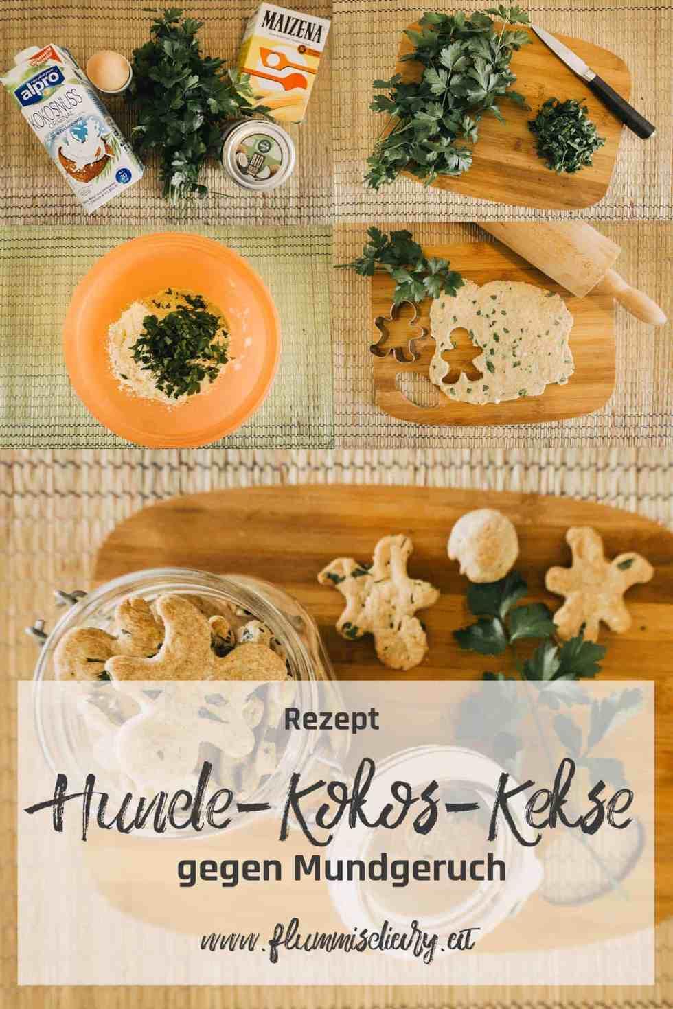 mundgeruch-beim-hund-anleitung-hunde-kokos-kekse