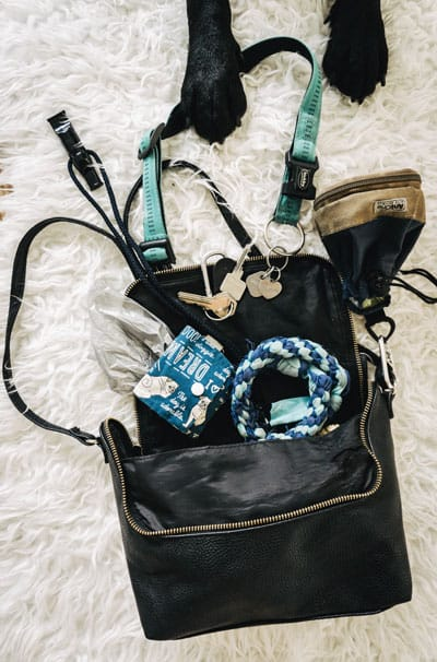 whats-in-my-bag-gassi-gehen