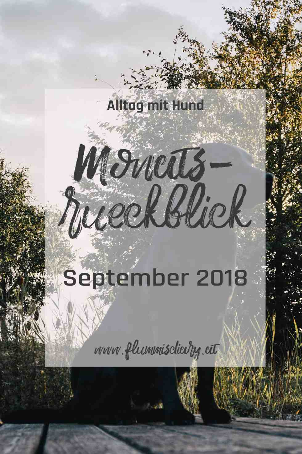 pinterest-monatsrueckblick-september