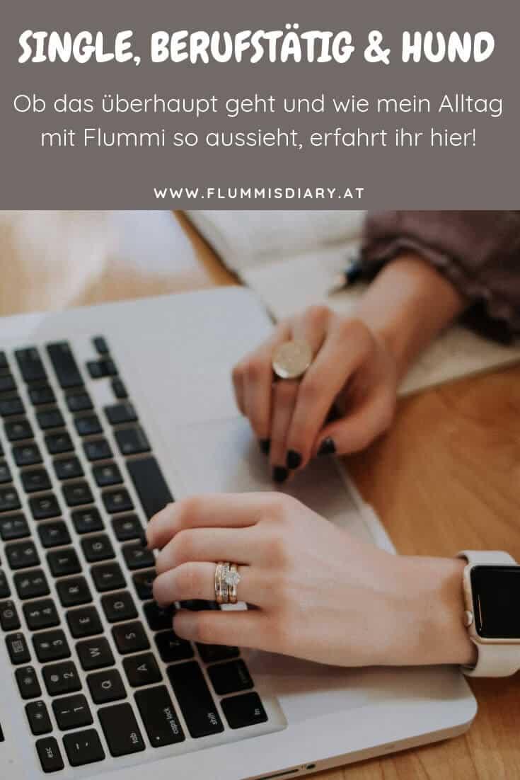 hund-alleine-vollzeitjob-single