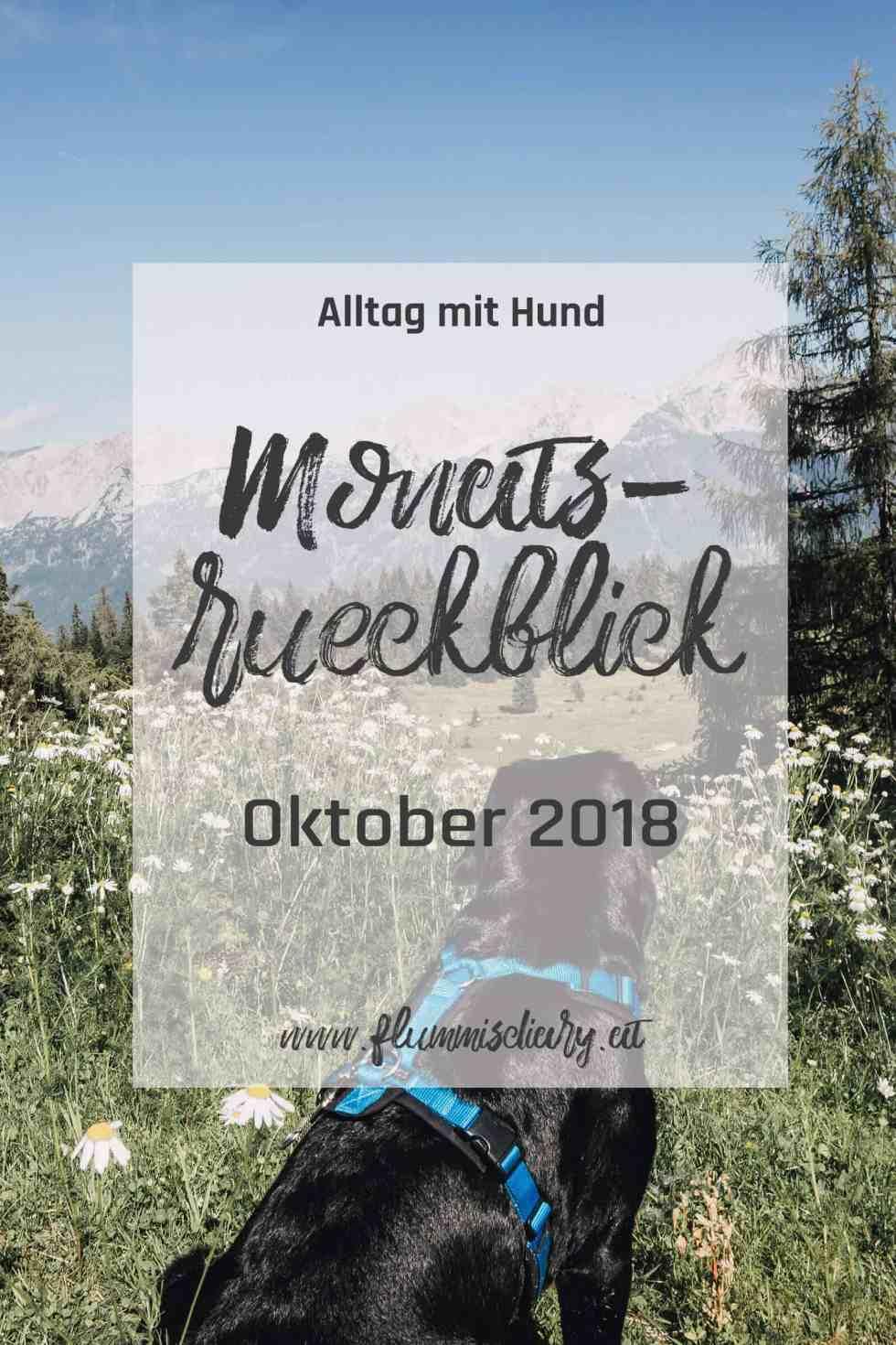 monatsrueckblick-oktober-2018monatsrueckblick-oktober-2018
