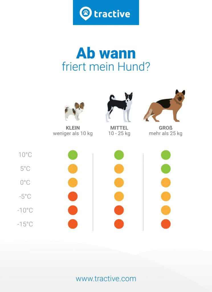tractive-wann-friert-mein-hund