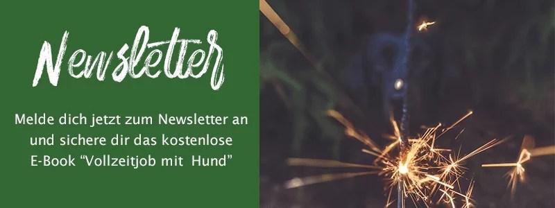 Newsletter-Banner-klein