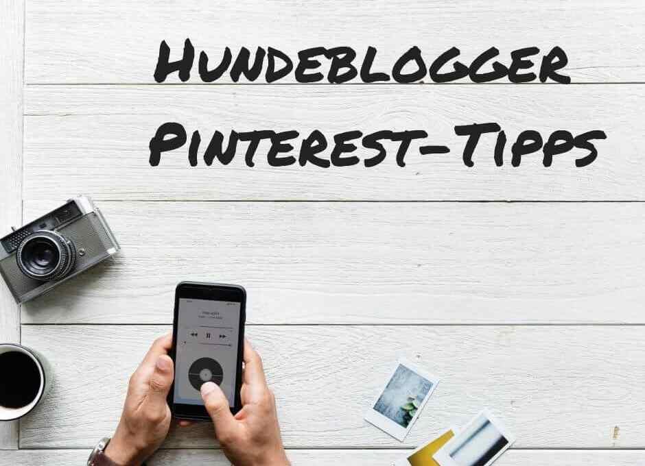hundeblogger-tipps-pinterest