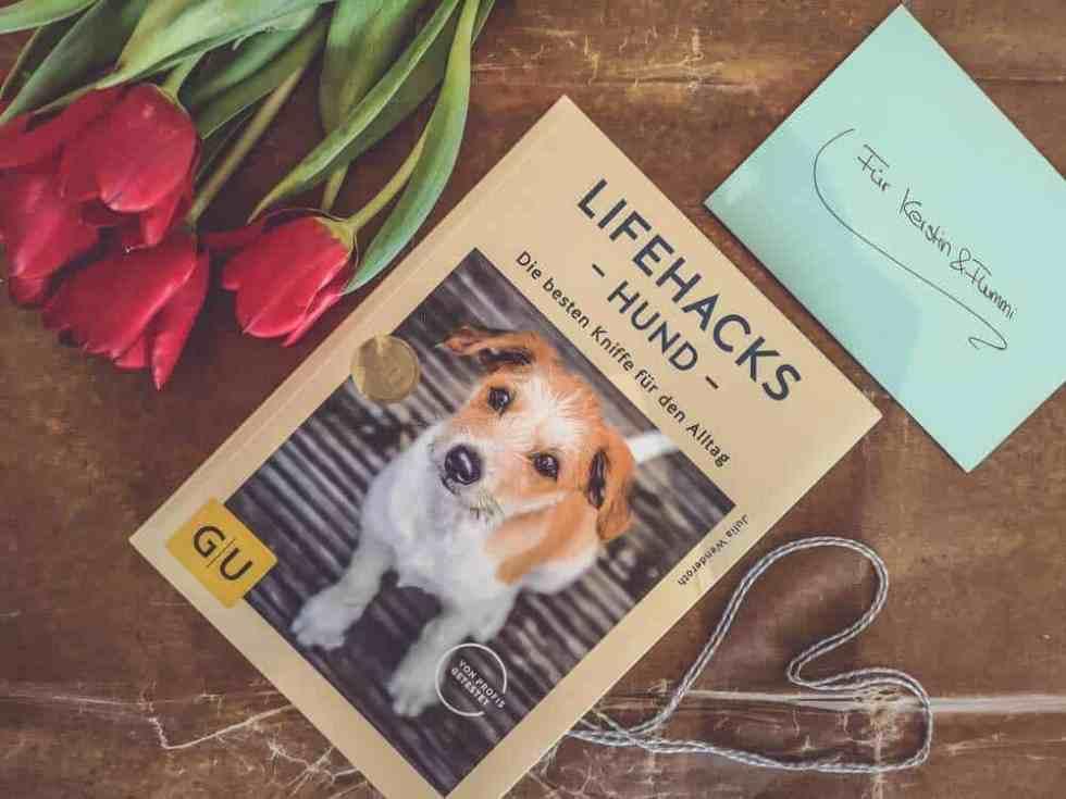 lifehacks-hund-buch-review
