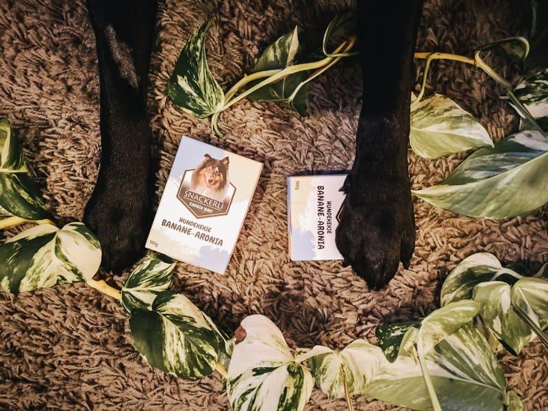 hundesnack-gewinnspiel-flummisdiary.jpg