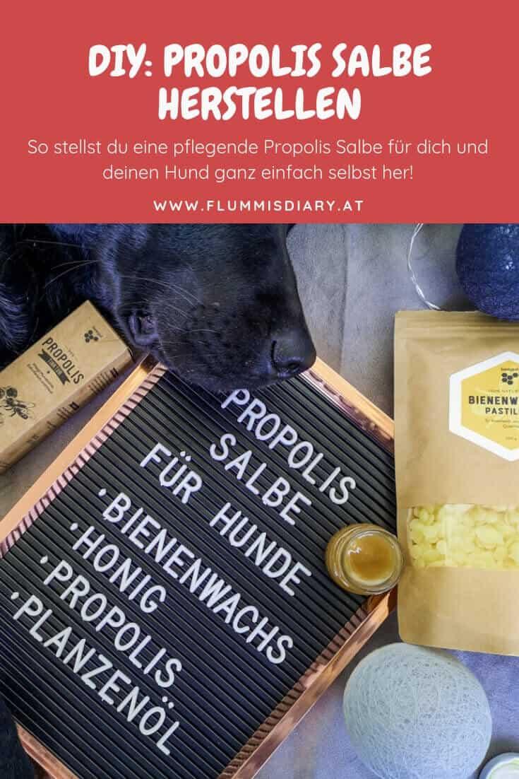 propolissalbe-hund-diy