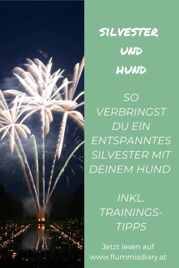 silvester-feuerwerk-hund-neujahr-tipps-training