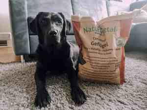 naturavetal-hundefutter-test-hund-erfahrung-bericht-blog