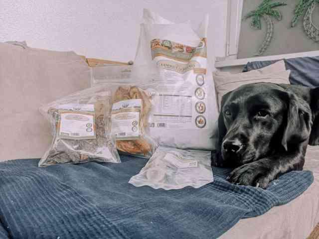 bellfor-hundefutter-im-test