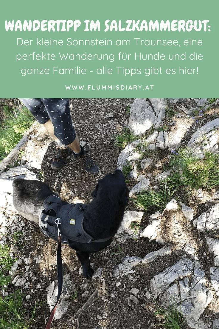 kleiner-sonnstein-mit-hund-tipps