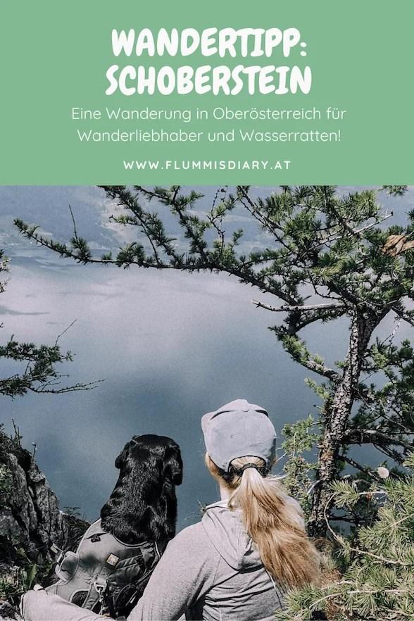 schoberstein-atterseee-mit-hund-wandern