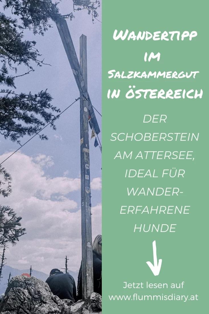 schoberstein-mit-hund-wandern-salzkammergut