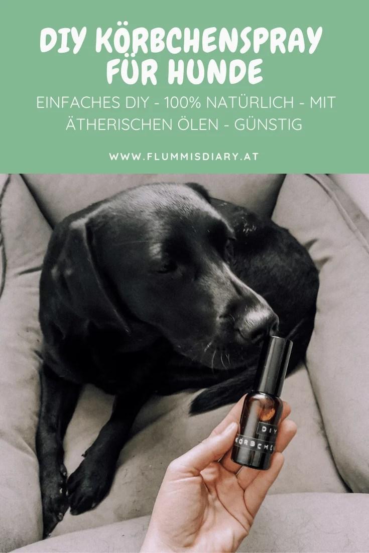 diy-hunde-bett-spray-koerbchen-frische-entspannung-aroma-oele-hund