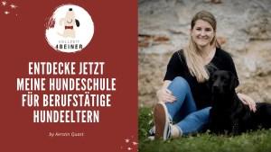 vollzeit4beiner-hundeschule-kerstin-quast-online-hunde