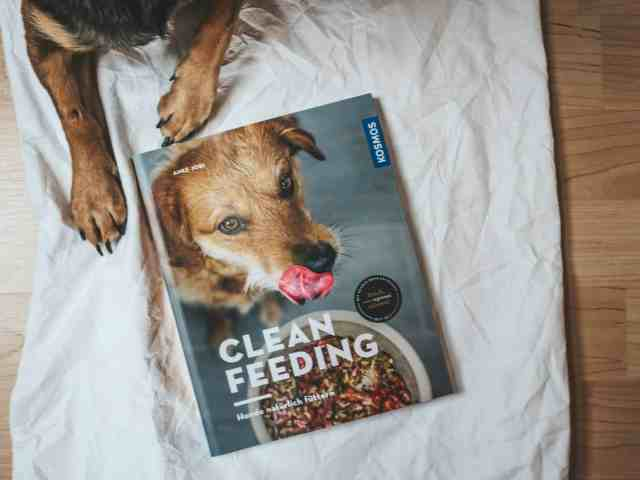 Clean_Feeding_Buch_Review_Cover