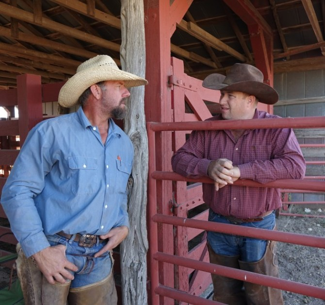 Cowboys, Cowboys… And More Cowboys!